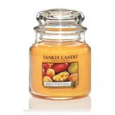 Yankee Candle Aromatická svíčka Classic střední Salsa z manga a broskví (Mango Peach Salsa) 411 g unisex
