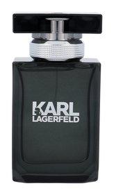 Karl Lagerfeld Karl Lagerfeld For Him Toaletní voda 50 ml pro muže
